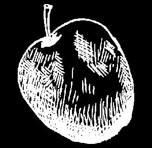 manzanaImagen Destilerias Sinc